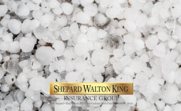 Protect Your Vehicle from Damages Caused by Hailstorms